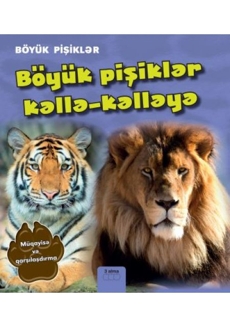 Böyük pişiklər kəllə-kəlləyə: Müqayisə və qarşılaşdırma